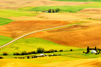 The Beautiful Palouse